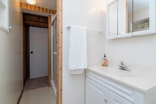Photo 34: 131 Hillview Avenue in East St Paul: Birds Hill Town Residential for sale (3P)  : MLS®# 202110748
