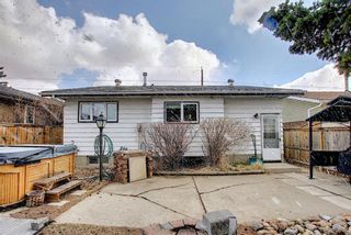 Photo 38: 367 Maitland Crescent NE in Calgary: Marlborough Park Detached for sale : MLS®# A1093291