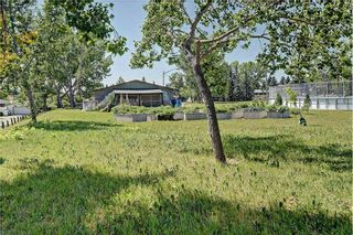 Photo 28: 6203 LEWIS Drive SW in Calgary: Lakeview House for sale : MLS®# C4128668