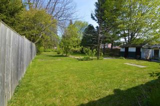 Photo 3: 19 Alfred Street: Port Hope House (Bungalow) for sale : MLS®# X5243976