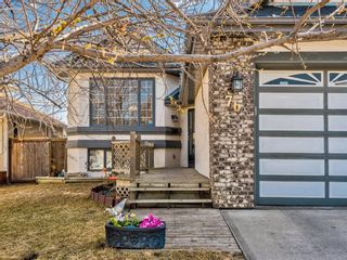 Photo 44: 76 Harvest Oak Place NE in Calgary: Harvest Hills Detached for sale : MLS®# A1090774