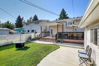 Photo 49: 1015 Maplecroft Road SE in Calgary: Maple Ridge Detached for sale : MLS®# A1139201