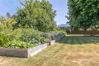 """Photo 39: 108 46210 CHILLIWACK CENTRAL Road in Chilliwack: Chilliwack E Young-Yale Townhouse for sale in """"CEDARWOOD"""" : MLS®# R2602109"""