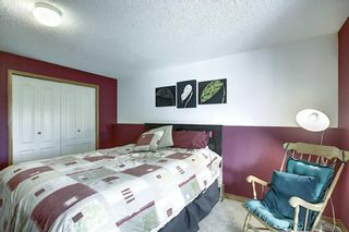 Photo 37: 289 Lakeside Greens Crescent: Chestermere Detached for sale : MLS®# A1026578