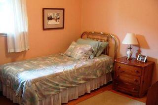 Photo 8: 35 Doerr Road in Toronto: House (Bungalow) for sale (E09: TORONTO)  : MLS®# E1897274