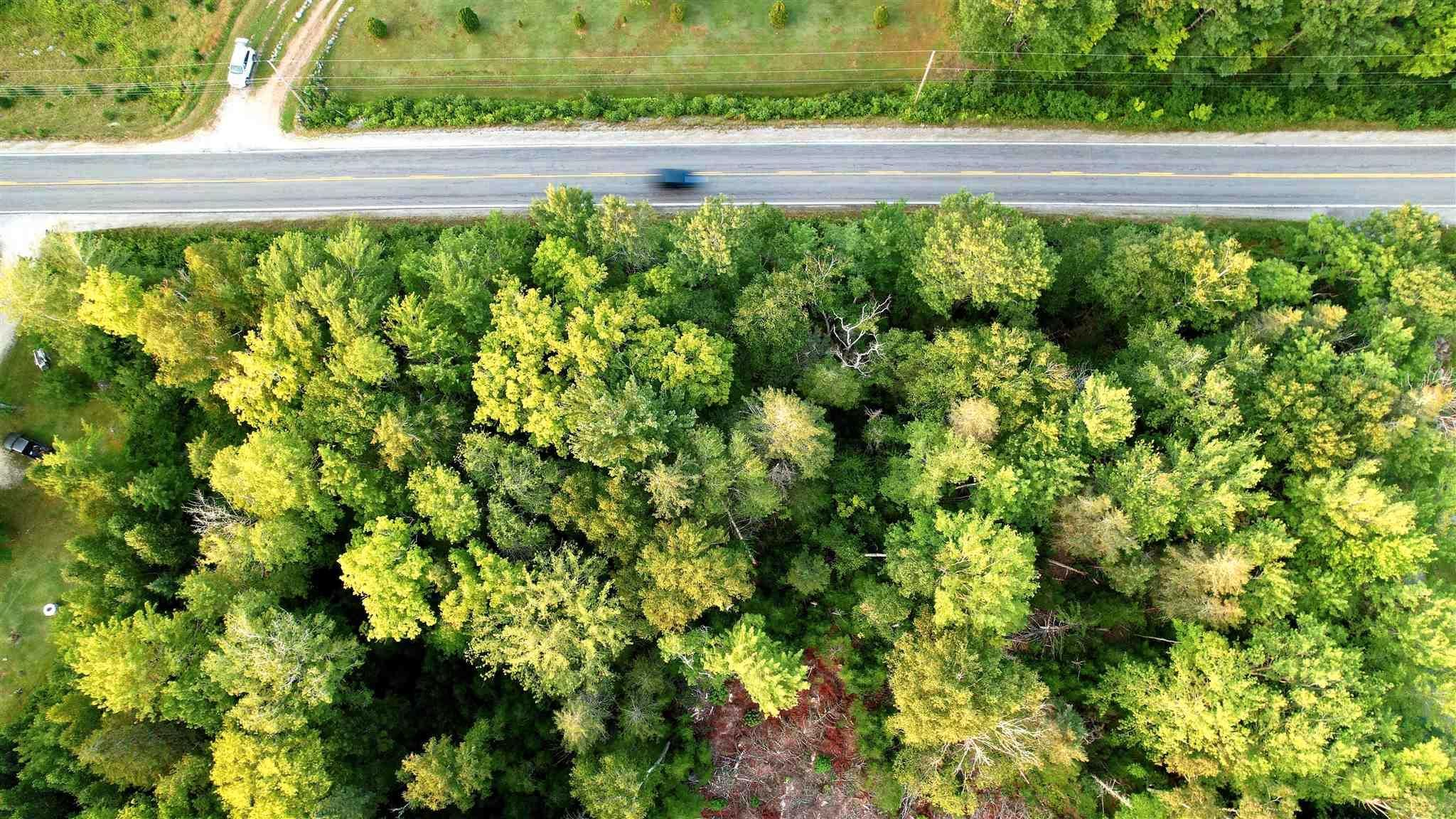 Main Photo: HWY 12 in Aldersville: 405-Lunenburg County Vacant Land for sale (South Shore)  : MLS®# 202121137