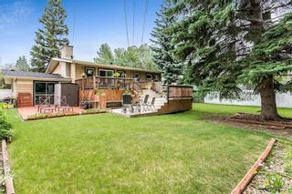 Photo 31: 184 MAPLE COURT Crescent SE in Calgary: Maple Ridge Detached for sale : MLS®# A1080744