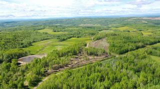 Photo 6: 13934 PACKHAM FRONTAGE Road: Charlie Lake Agri-Business for sale (Fort St. John (Zone 60))  : MLS®# C8039465