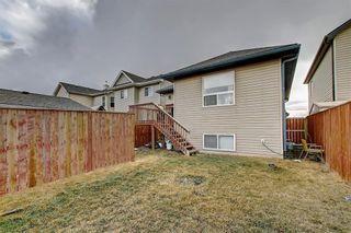 Photo 45: 207 SADDLEMEAD Close NE in Calgary: Saddle Ridge Detached for sale : MLS®# C4236086