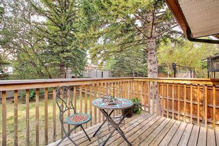Photo 43: 1919 Bay Shore Road SW in Calgary: Bayview Detached for sale : MLS®# A1129407