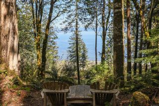 Photo 95: Lot 2 Eagles Dr in : CV Courtenay North Land for sale (Comox Valley)  : MLS®# 869395