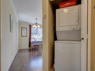 Photo 24: 403 490 Marsett Pl in : SW Royal Oak Condo for sale (Saanich West)  : MLS®# 885208