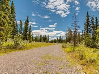 Photo 18: 20 34364 RANGE ROAD 42: Rural Mountain View County Land for sale : MLS®# A1017805