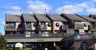 """Photo 1: 3 20229 FRASER Highway in Langley: Langley City Condo for sale in """"Langley Place"""" : MLS®# R2542245"""