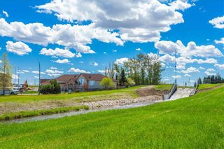 Photo 47: 3 WILDFLOWER Cove: Strathmore Detached for sale : MLS®# A1074498