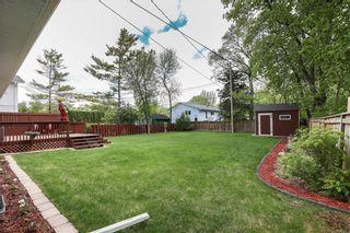 Photo 29: 249 Ronald Street in Winnipeg: Grace Hospital Residential for sale (5F)  : MLS®# 202113019