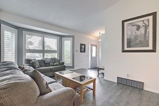 Photo 3: 94 Erin Meadow Close SE in Calgary: Erin Woods Detached for sale : MLS®# A1135362