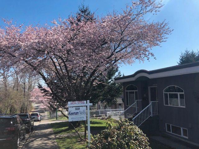 Main Photo: 4008 KINCAID STREET in Burnaby: Burnaby Hospital 1/2 Duplex for sale (Burnaby South)  : MLS®# R2346188