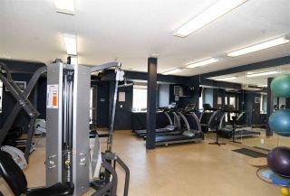 Photo 43: 407 10121 80 Avenue in Edmonton: Zone 17 Condo for sale : MLS®# E4258416