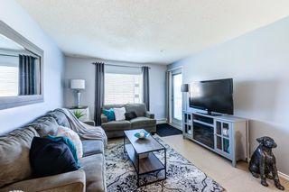Photo 14: 301 17404 64 Avenue NW in Edmonton: Zone 20 Condo for sale : MLS®# E4245502
