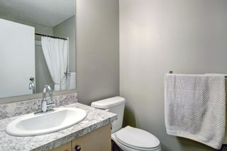 Photo 19: 4104 73 Erin Woods Court SE in Calgary: Erin Woods Apartment for sale : MLS®# A1042999