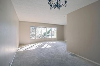 Photo 13: 132 Mardale Crescent NE in Calgary: Marlborough Detached for sale : MLS®# A1146772