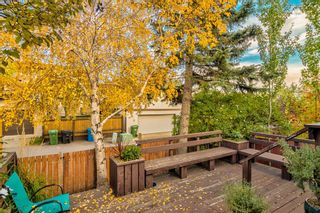 Photo 9: 508 Mckinnon Drive NE in Calgary: Mayland Heights Detached for sale : MLS®# A1154496