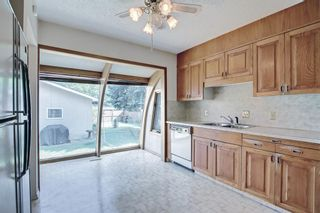 Photo 11: 2618 46 Street SE in Calgary: Forest Lawn Detached for sale : MLS®# A1146875