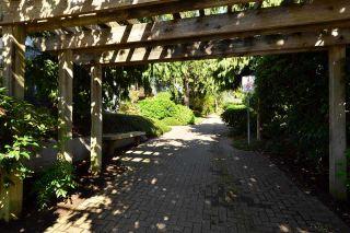 "Photo 18: 403 1220 FIR Street: White Rock Condo for sale in ""VISTA PACIFICA"" (South Surrey White Rock)  : MLS®# R2332976"