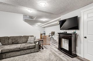 Photo 30: 5 Templeton Bay NE in Calgary: Temple Semi Detached for sale : MLS®# A1113362