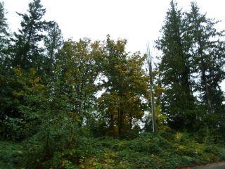 Photo 9: 16577 Old McLellan Road in Richardson Ridge: Home for sale : MLS®# F1225571