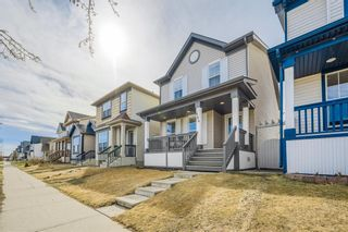 Photo 1: 484 Prestwick Circle SE in Calgary: McKenzie Towne Detached for sale : MLS®# A1101425