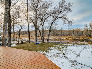 Photo 45: 200 370181 79 Street E: Rural Foothills County Detached for sale : MLS®# A1052177