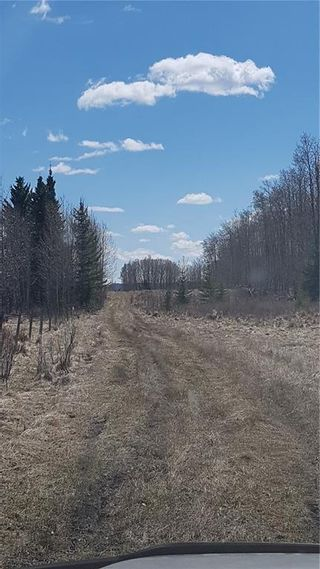 Photo 16: Range Road 55 in Rural Rocky View County: Rural Rocky View MD Land for sale : MLS®# C4295902