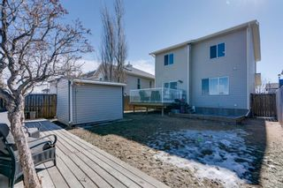 Photo 32: 227 Silver Springs Way NW: Airdrie Detached for sale : MLS®# A1083997