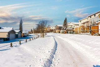 Photo 34: 170 Arbour Grove Close NW in Calgary: Arbour Lake Detached for sale : MLS®# A1068980