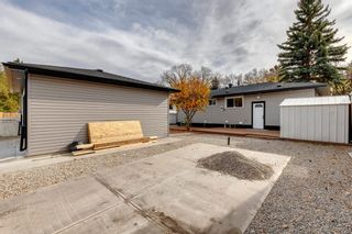 Photo 42: 87 Armstrong Crescent SE in Calgary: Acadia Detached for sale : MLS®# A1152498
