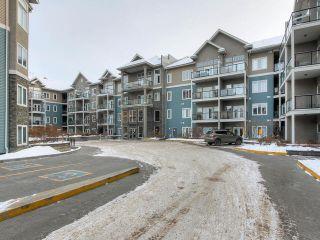 Photo 36: 427 10121 80 Avenue in Edmonton: Zone 17 Condo for sale : MLS®# E4227613