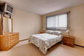 Photo 23: 147 Templevale Place NE in Calgary: Temple Detached for sale : MLS®# A1144568