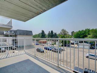 Photo 23: 309 8604 Gateway Boulevard in Edmonton: Zone 15 Condo for sale : MLS®# E4257711