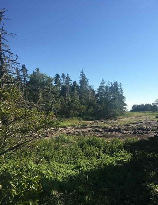 Photo 7: Lot Highway 3 in East Green Harbour: 407-Shelburne County Vacant Land for sale (South Shore)  : MLS®# 202101579