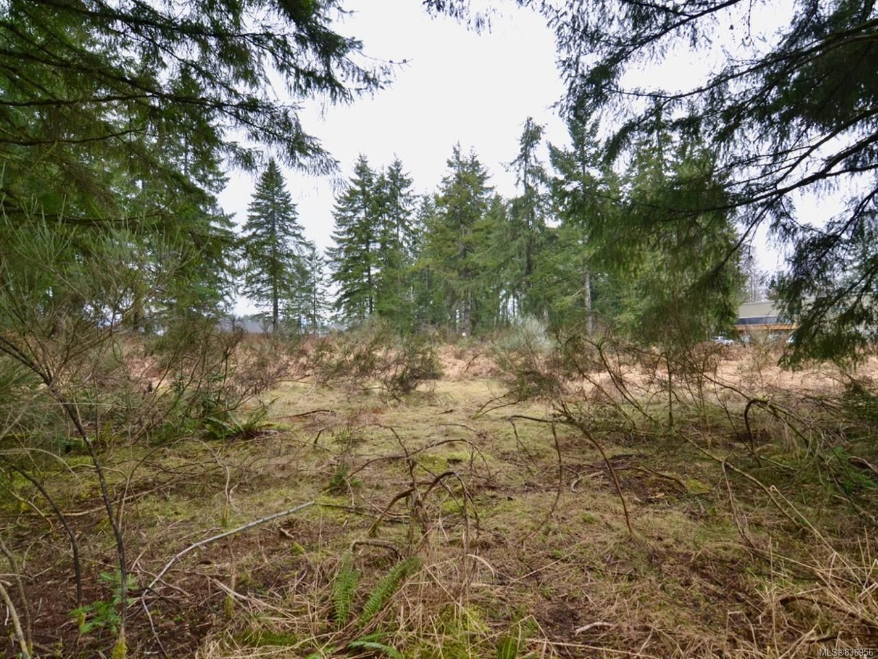 Photo 4: Photos: Lot A Ulverston Ave in CUMBERLAND: CV Cumberland Other for sale (Comox Valley)  : MLS®# 836956
