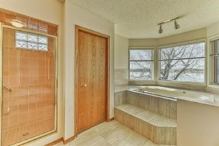 Photo 23: 119 East Chestermere Drive: Chestermere Semi Detached for sale : MLS®# A1082809