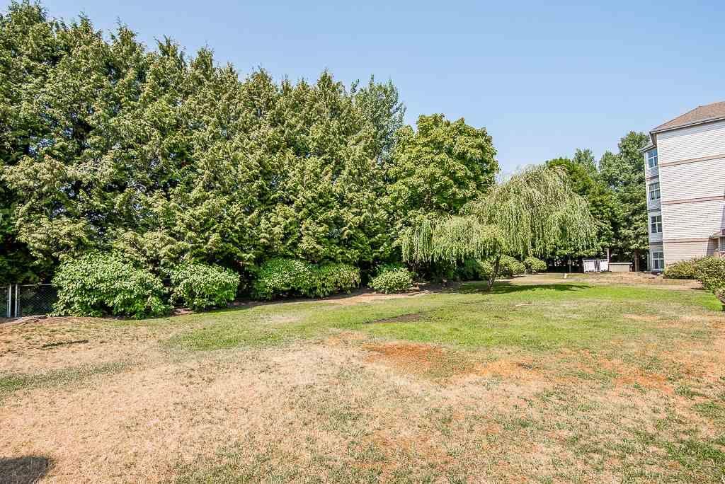 "Photo 18: Photos: 313 12739 72 Avenue in Surrey: West Newton Condo for sale in ""NEWTON COURT"" : MLS®# R2293338"