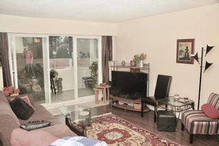 Photo 8: 103 2211 Clearbrook Road in Abbotsford: Abbotsford West Condo for sale
