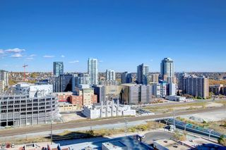Photo 14: 1710 1122 3 Street in Calgary: Beltline Apartment for sale : MLS®# A1153603