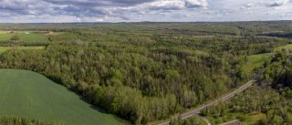 Photo 1: Lot B2 1790 Davidson Street in Lumsden Dam: 404-Kings County Vacant Land for sale (Annapolis Valley)  : MLS®# 202014040