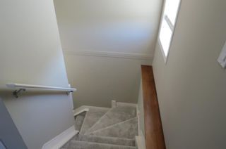 Photo 28: 157 Evansford Circle NW in Calgary: Evanston Detached for sale : MLS®# A1059014