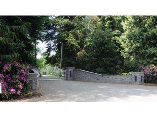 Photo 4: 27049 18 AV in Langley: Otter District House for sale : MLS®# F1445983