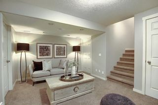 Photo 48: 227 Prestwick Manor SE in Calgary: McKenzie Towne Detached for sale : MLS®# A1059017